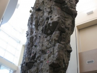 nicros-climbing-wall-elgin-rec-center-5