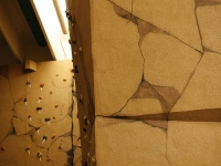 nicros-climbing-wall-ltf-berkeley-heights-4