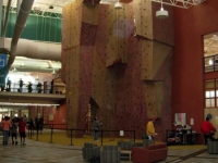 nicros-climbing-wall-livonia-com-rec-center-3