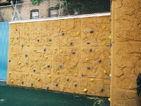 nicros-climbing-wall-mary-mcdowell-center-2
