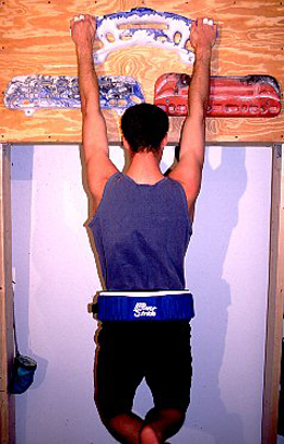 physical-weighted-pull-up