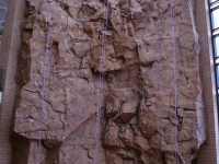 nicros-climbing-wall-u-texas-pan-am-1