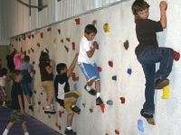 nicros-climbing-wall-armstrong-elementary-3