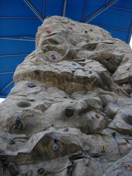 nicros-climbing-wall-boys-girls-club-sarasota-4