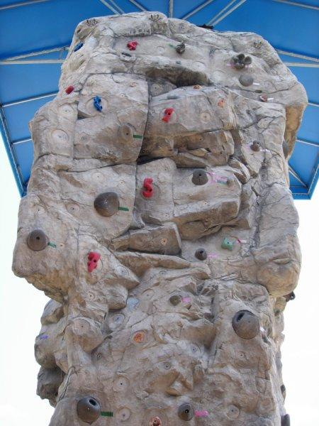 nicros-climbing-wall-boys-girls-club-sarasota-5