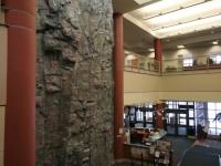 nicros-climbing-wall-carleton-college-3