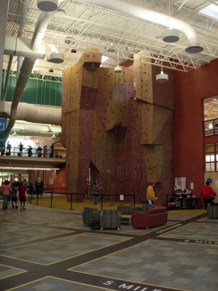 nicros-climbing-wall-livonia-com-rec-center-3