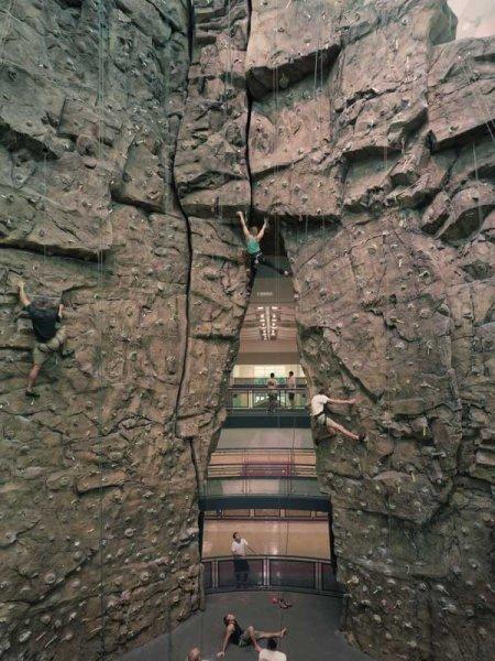 nicros-climbing-wall-university-houston-1