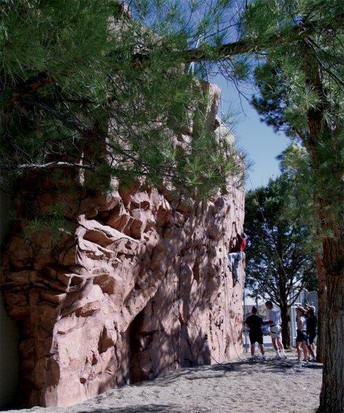 nicros-climbing-wall-page-1