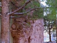 nicros-climbing-wall-page-2