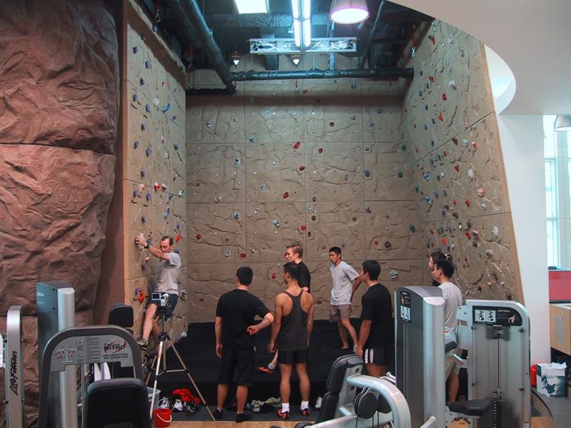 nicros-climbing-wall-pure-fitness-1