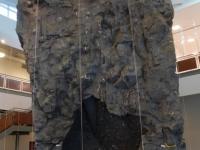 nicros-climbing-wall-sfa-2
