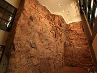 nicros-climbing-wall-tarleton-1