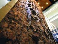 nicros-climbing-wall-young-harris-1