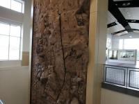 nicros-climbing-wall-young-harris-2